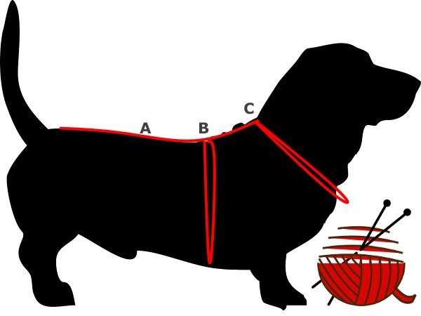 Dog Sweater Measurements