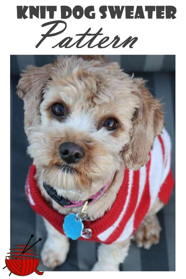 Make A Knit Dog Sweater For Your Doggie Heres A Pattern