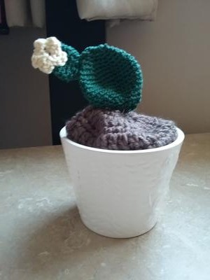 Crocheted Prickly Pear Cactus
